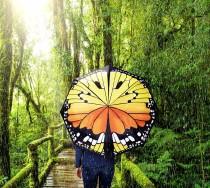 Regenschirm_Dschungel_vertuscht2